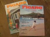 Figaro_1